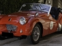1954 - TRIUMPH TR2 Sport -