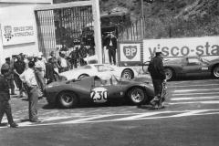 Targa-Florio'66large