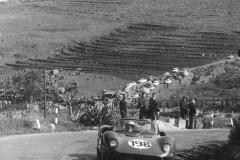 targa florio 1965 vacc. band ferrari 265